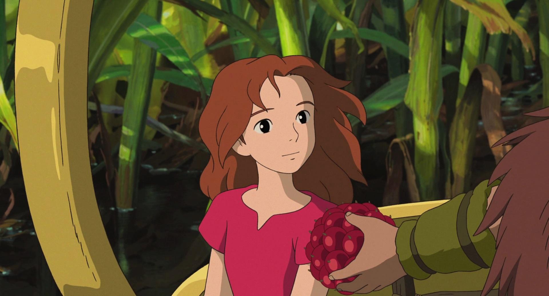 The Domestic World Of Arrietty Jonna Gj